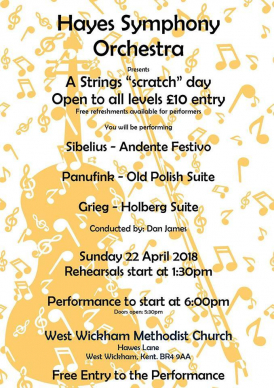Hayes Symphony Orchestra - Strings Open Day