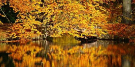 Sounds of Autumn Concert